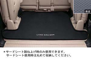 Luggage software tray