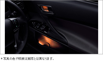 Door handle &amp\; pocket illumination (front &amp\; rear)/primer (door handle &amp\; for pocket illumination)