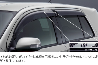 Side visor (RV type)
