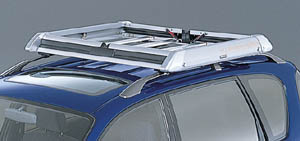 All season carrier (roof rail type)